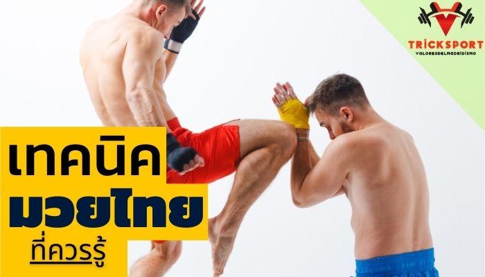เทคนิคการเล่นกีฬามวยไทย